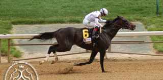 "Stephen Foster Handicap 2013: Take Charge Indy ""Sharper Than Ever"""
