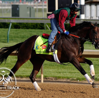 "Weekend Recap; Mucho Macho Man ""In Good Shape"""