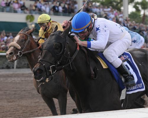 Jockey Calvin Borel will be aboard Revolutionary for the 2013 Kentucky Derby.
