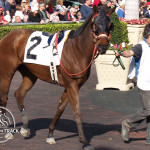 Cindy Cata placed 3rd in race #7 at Gulfstream Park.