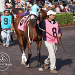 Lots of Mazel Gulfstream Park.