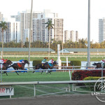 Rydilluc and Edgar Prado crossed the finish line first during the 2013 Palm Beach Stakes.