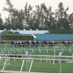 2013 Palm Beach Stakes.