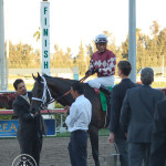 Rydilluc and Edgar Prado heading to the winners circle. Palm Beach Stakes 2013.