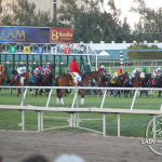 Breaking from the starting gate at Gulfstream Park for the 2013 Palm Beach Stakes.