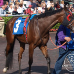 Sweetly Put Gulfstream Park.