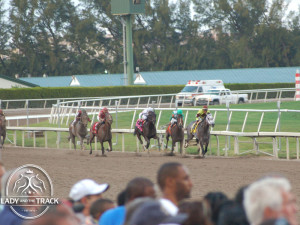 Take Charge Indy Donn Handicap 2013