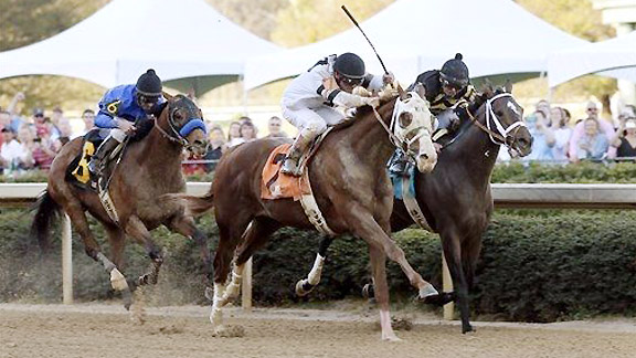 Will Take Charge Rebel Stakes