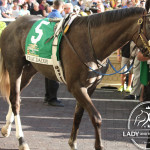 Horse: Frac DaddyJockey Victor LebronTrainer: Kenny McPeekOwner: Magic City Thoroughbred Partners