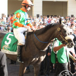 Kentucky Derby 2013Horse: Frac DaddyJockey Victor LebronTrainer: Kenny McPeekOwner: Magic City Thoroughbred Partners