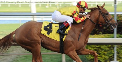 Private Ensign will break from post position #3 in the 2013 Ashland Stakes on April 6th. PHOTO: David Stephenson