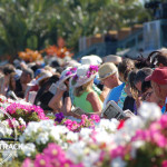 Some hats matched the floral arrangements at Gulfstream Park.