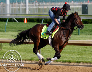 Orb will attempt to win the second jewel of the Triple Crown on May 18, 2013.