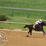 Alysheba Stakes 2013 Take Charge Indy.