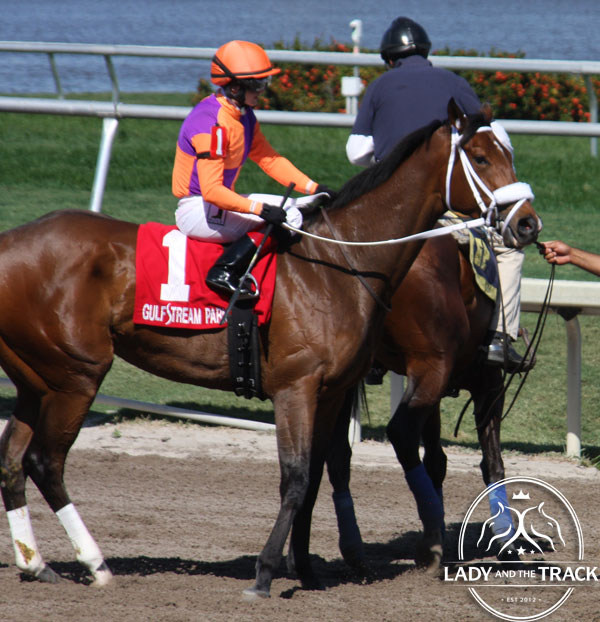 Cue The Moon finished 3rd in the Gulfstream Oaks. She'll run against Midnight Lucky and Close Hatches in the Acorn Stakes on Monday May 27, 2013.