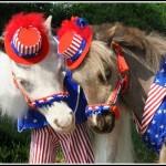 Memorial Day Horse Races
