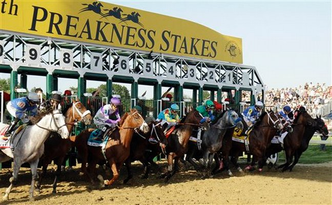 2013 Preakness Stakes Results: Oxbow & Gary Stevens - Lady ...