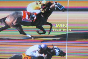 Metropolitan Handicap 2013 Results Payouts Replays Lady And The Track