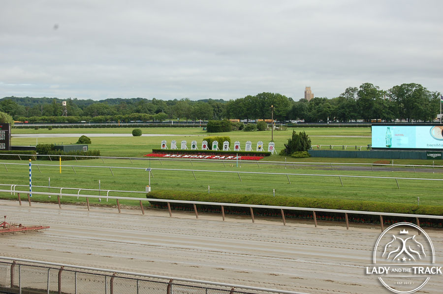 Belmont Stakes 2013 Photos Lady And The Track