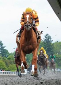 Firecracker Handicap 2013 Odds Amp Picks Lady And The Track
