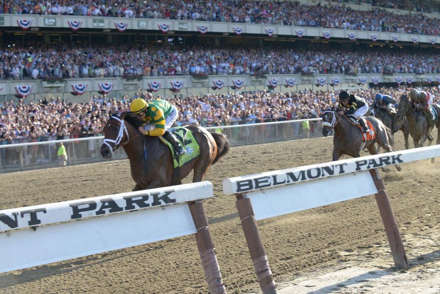 racing form profiles horse prospectors bride