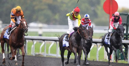 Silver Max Shadwell Turf Mile 2013
