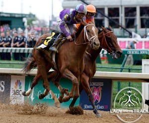 Princess of Sylmar 2013 Breeders' Cup Ladies' Classic Distaff