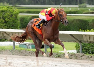 Delta Downs Princess Stakes 2013