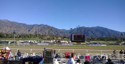 Dank Breeder's Cup Filly & Mare Turf