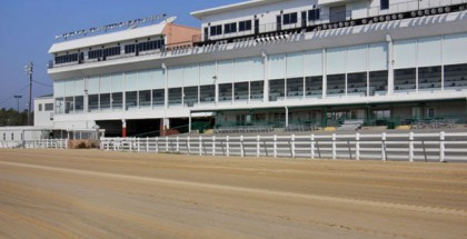 Delta Downs Jackpot Day