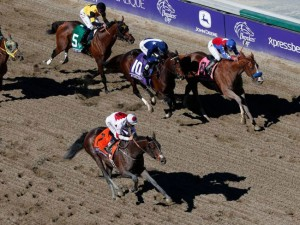 London Bridge Breeders' Cup Marathon 2013