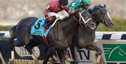 Honor Code 2013 Remsen Stakes