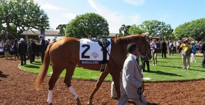 Rosalind 2013 Hollywood Starlet Stakes