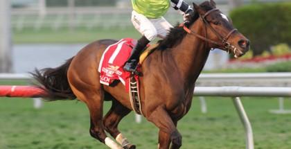 Lochte Horse