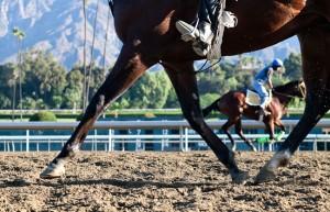 San Felipe Stakes 2014