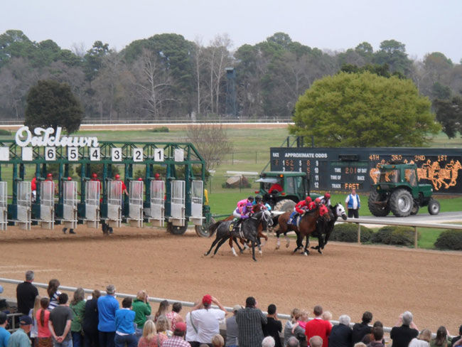Euphrosyne Wins The 2014 Honeybee Stakes After Sugar Shock