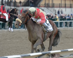 Wicked Strong Horse