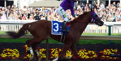 California Chrome Preakness Stakes 2014