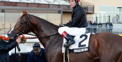 Imagining Horse