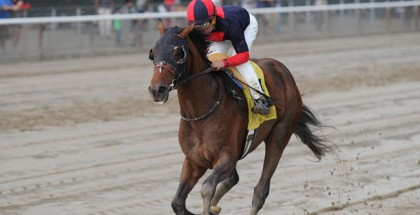 Tonalist Horse