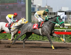 Lideris Gold Cup 2014