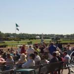 Belmont Stakes 2014 Photos Replay