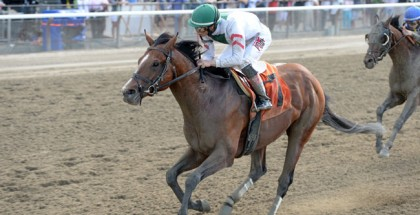 Palace True North Stakes 2014