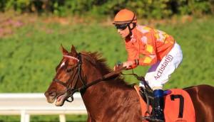 Shoemaker Mile Stakes 2014 Odds Picks