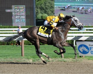 Whitney Invitational Handicap 2014
