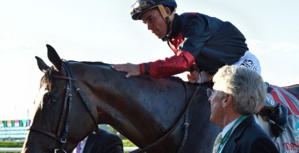 Jim Dandy Stakes 2014 Odds