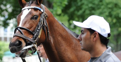 Haskell Invitational Monmouth Park 2014