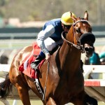 Harry F. Brubaker Stakes 2014 Blue Tone