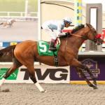 Pat O'Brian Stakes 2014 Goldencents