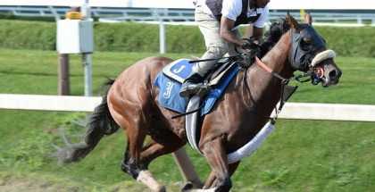Travers Stakes Wicked Strong